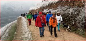 Wanderer in den märchenhaft-klirrendkalten Weinbergen