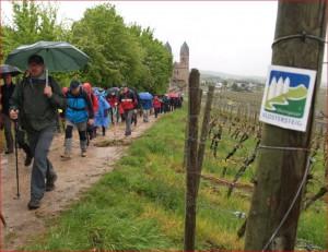 Pilgerwanderer auf dem Klostersteig an der Abtei St. Hildegard Eibingen