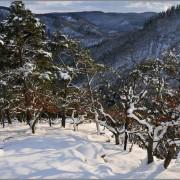 20160228_wispertalsteig_fotogalerie_winter_1