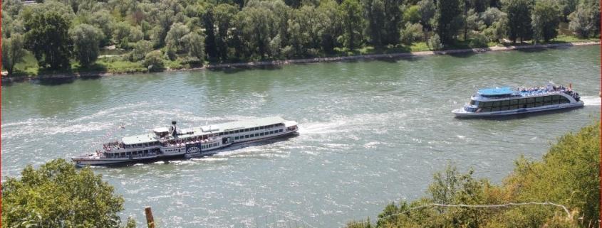 Weingarten Rheinkilometer 531